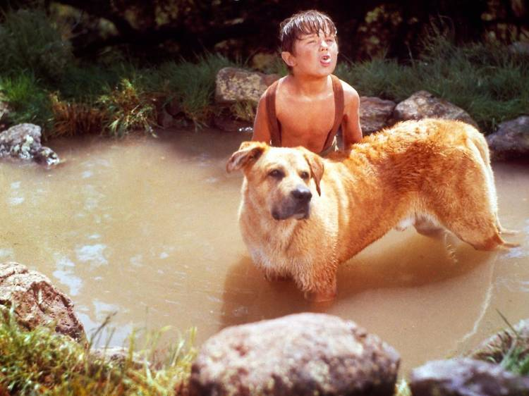 Su más fiel amigo (1957)