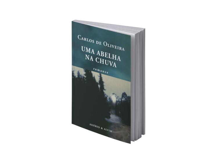 Uma Abelha na Chuva, de Carlos de Oliveira (1953)