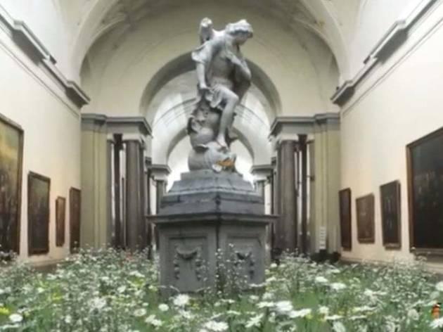 El Museo del Prado se llena de flores y mariposas
