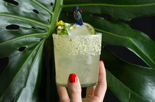 Bar Lab cocktail