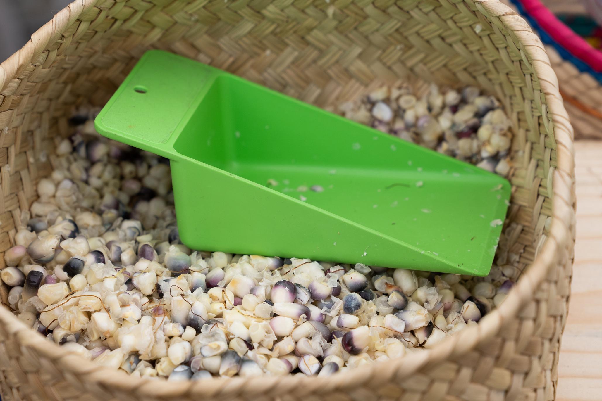 mercado de tlalpan semillas y elotes