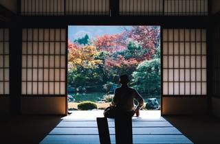 Japanese garden, looking from the inside