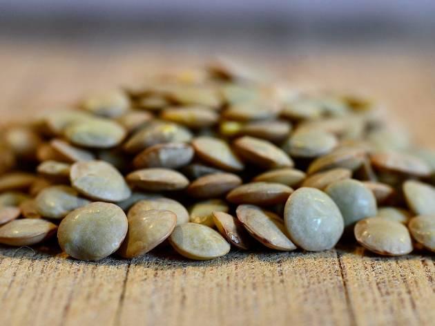 Lentilhas Verdes, Leguninosa, Lens culinaris