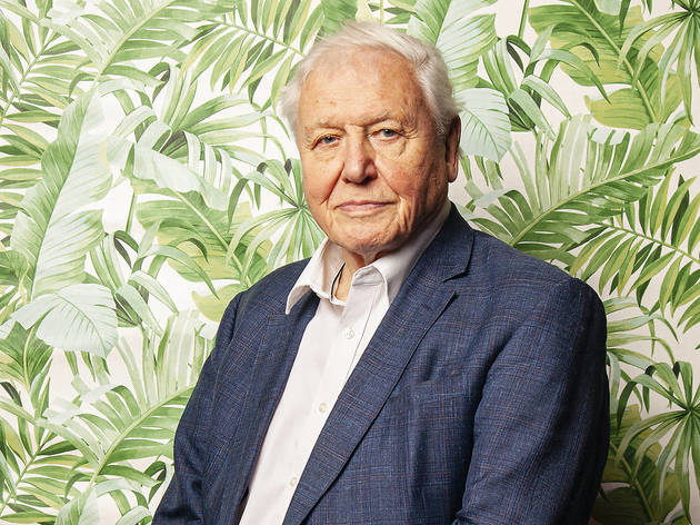 Tour the Great Barrier Reef online with Attenborough