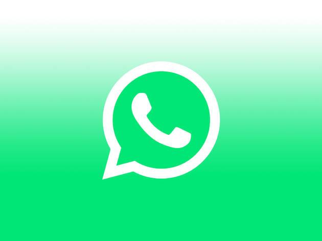 WhatsApp video chat app logo