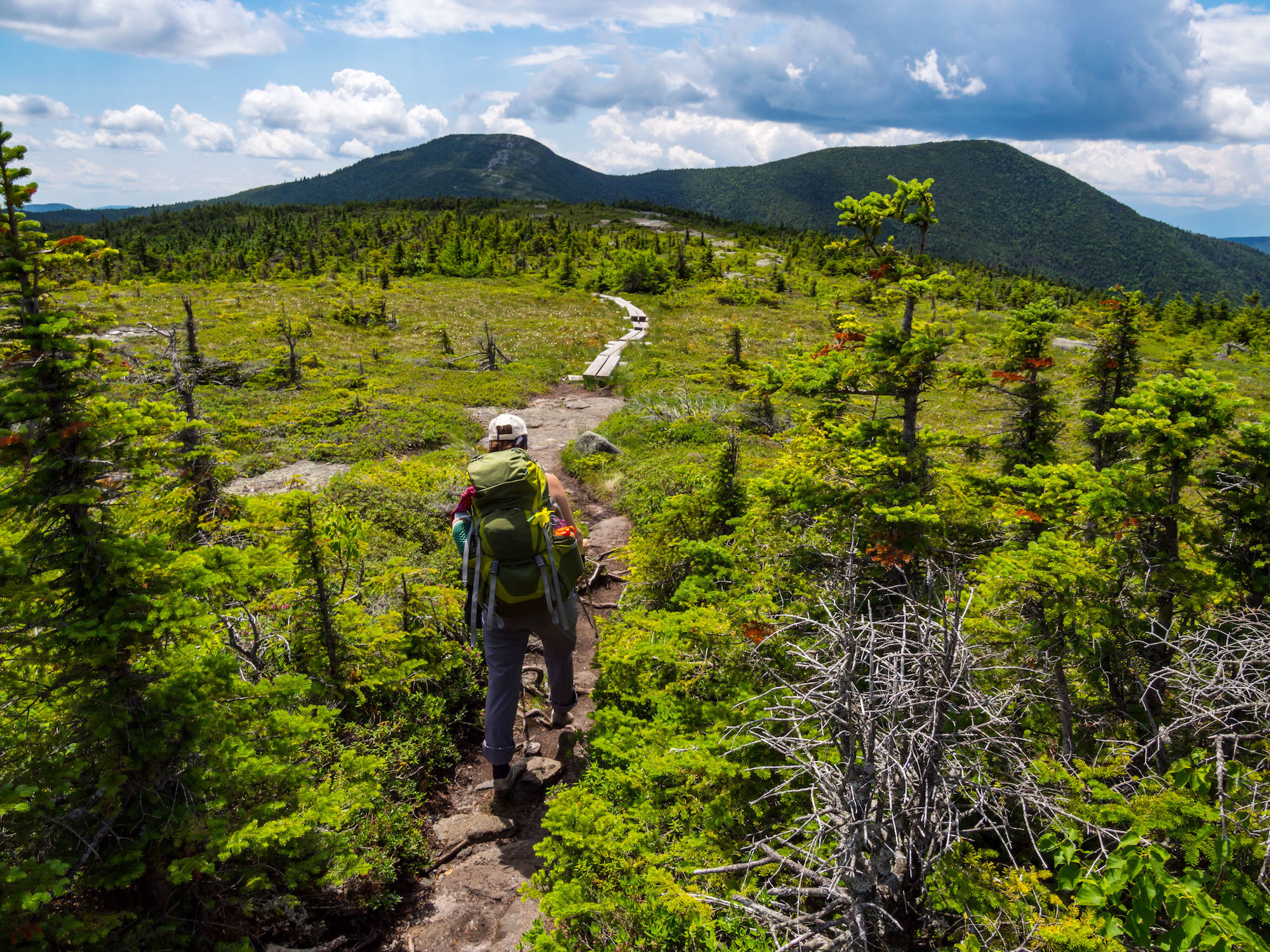 Get your steps in by virtually hiking the Appalachian Trail