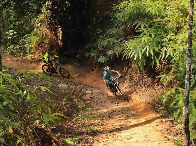 mountain biking trail, chestnut nature park
