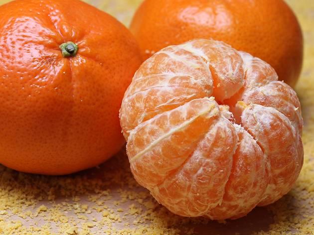Pé de Fruta
