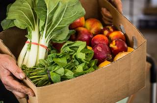 A person holds up a cardboard box filled with fresh vegetables