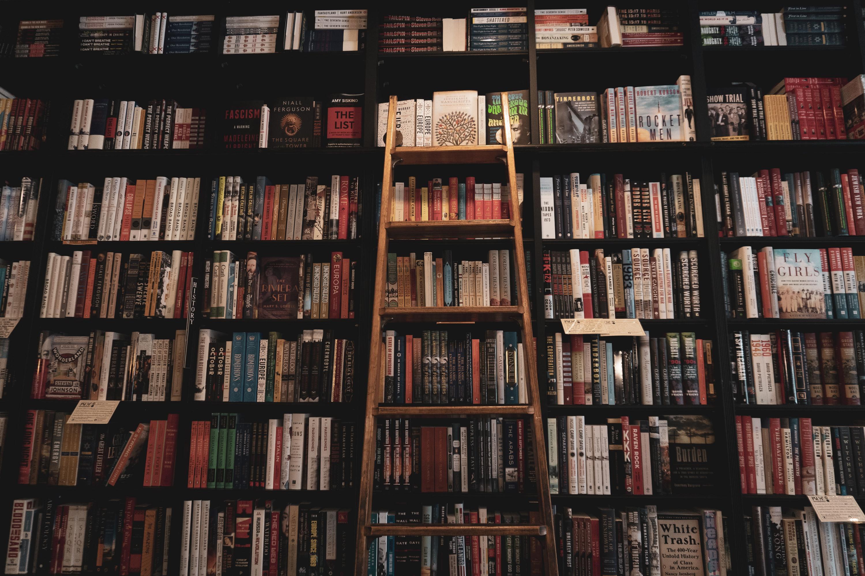 Accédez à 20 000 livres de la bibliothèque numérique de Paris gratuitement