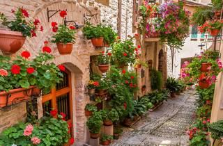 Rua, Flores, Varanda