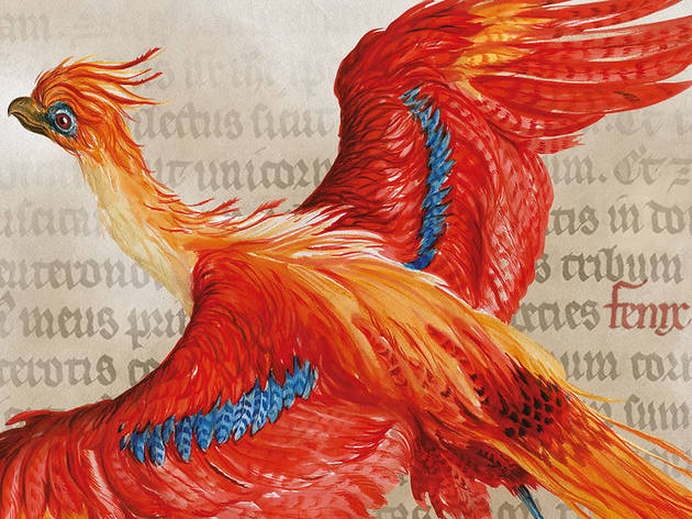 "Tour the ""Harry Potter: A History of Magic"""