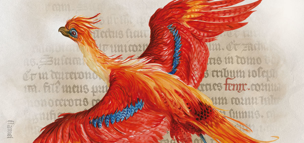 """Harry Potter: A History of Magic"" virtual exhibit"