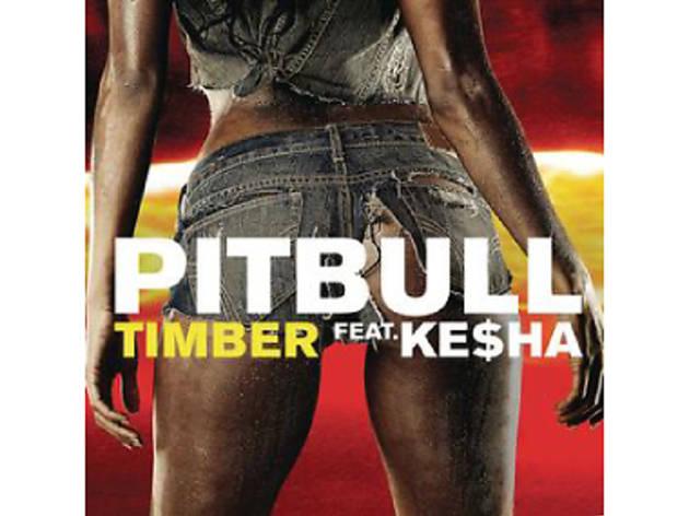 Pitbull Album Cover