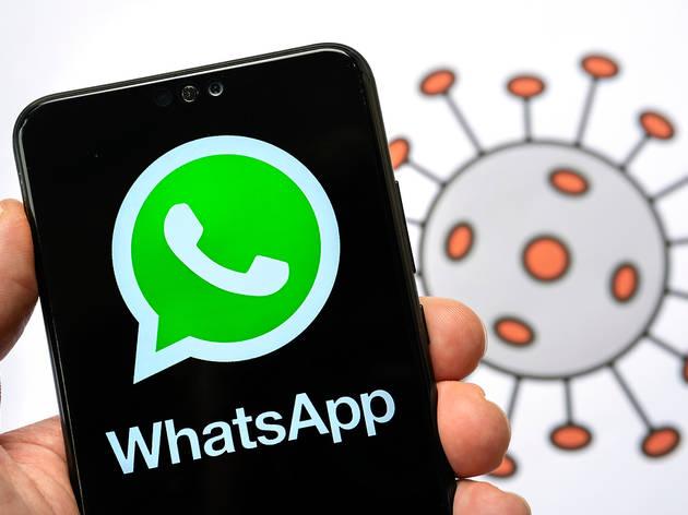 Novedad de Whatsapp
