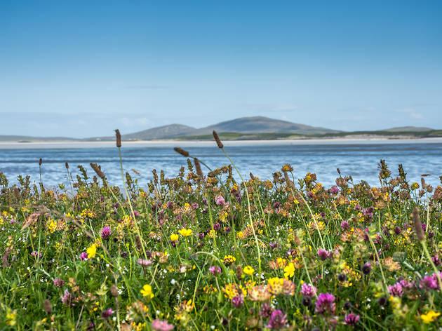 Machair, Scottish beaches
