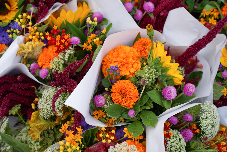 Flores, arranjos, buquê, florista