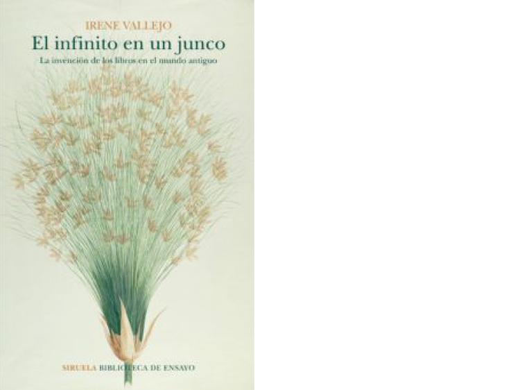 'El infinito en un junco', de Irene Vallejo