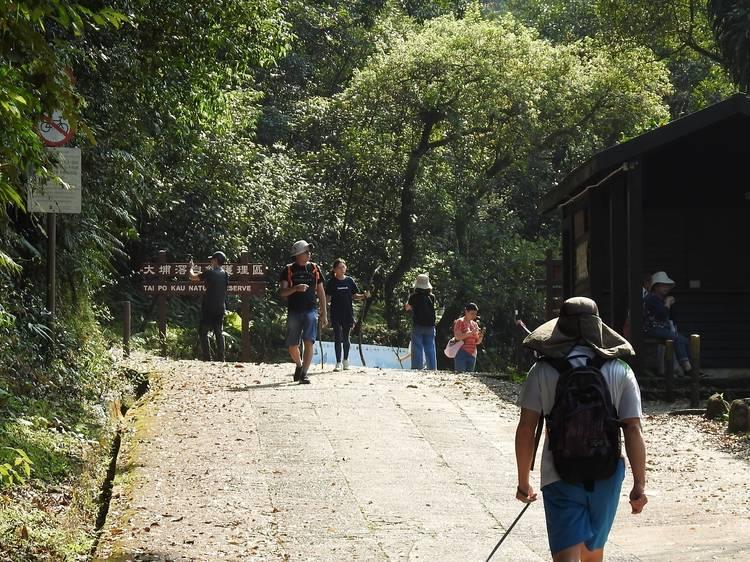 郊野公園所有燒烤及露營地點(關閉至4月11日)