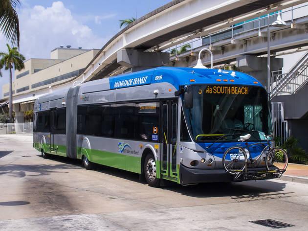 Miami bus service