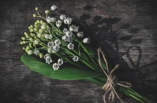 © Zoritsa Valova / Unsplash