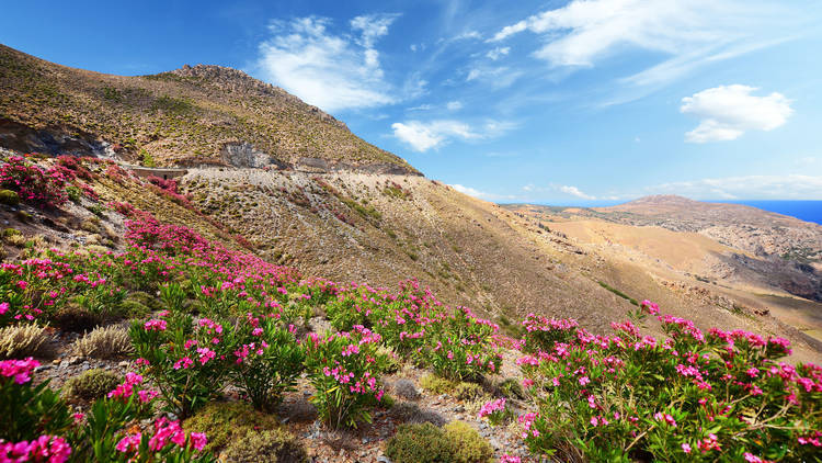 Beautiful Mediterranean landscape during summer