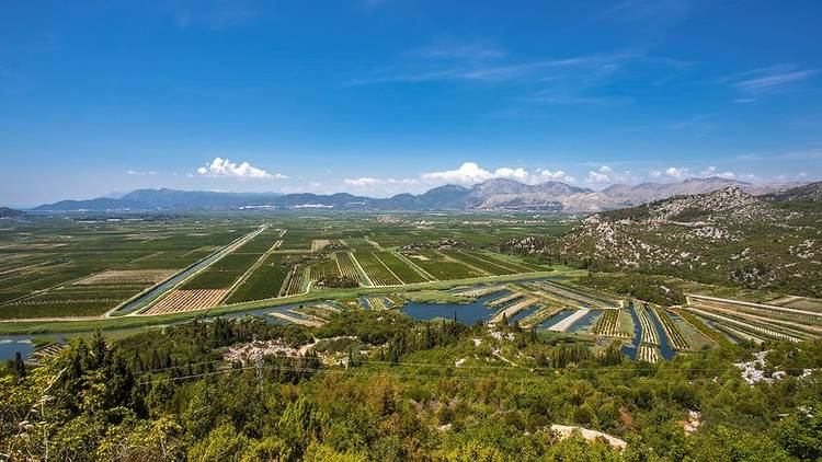 Agricultural Orchards and fields In the river delta neretva Croa