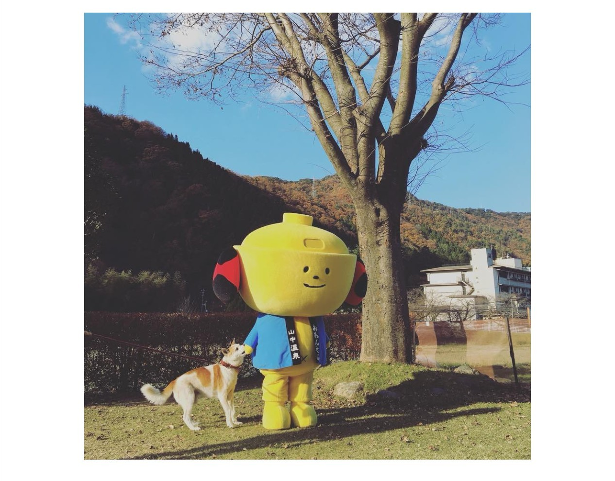 Owanson mascots