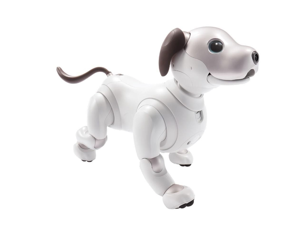 Aibo Sony robot pets