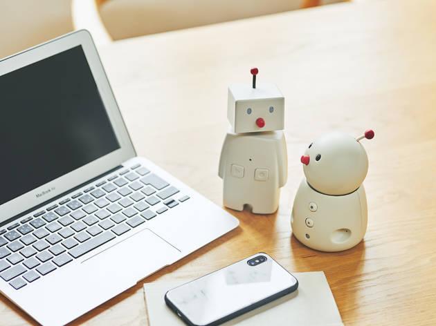 Bocco emo robot pet