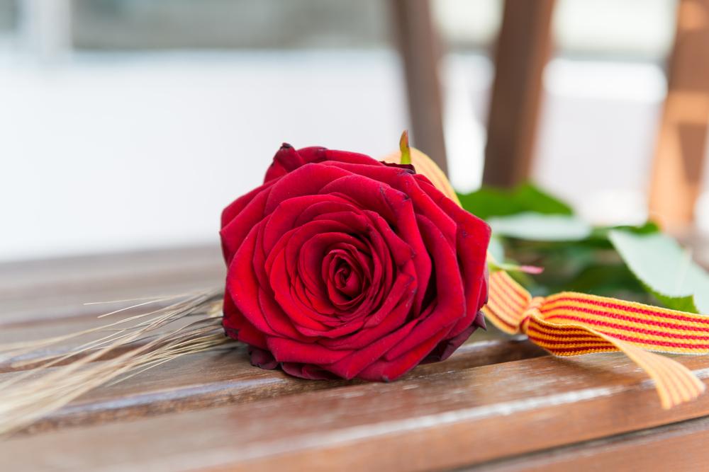 ¿Cómo enviar rosas a domicilio este Sant Jordi?