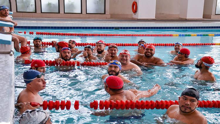 Glub de natación Osos al agua