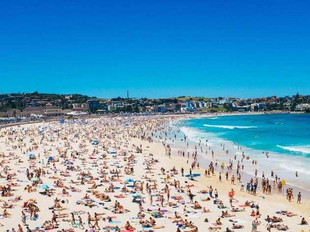 Crowded scene at Bondi Beach