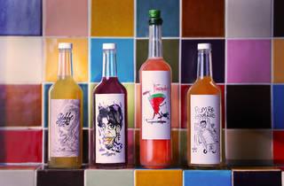 Bottles Ponyboy