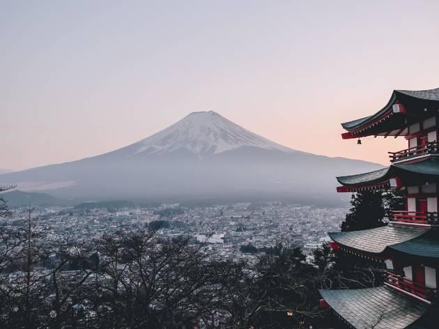 Mt Fuji and pagoda