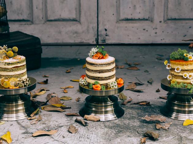 Jouer Cakes