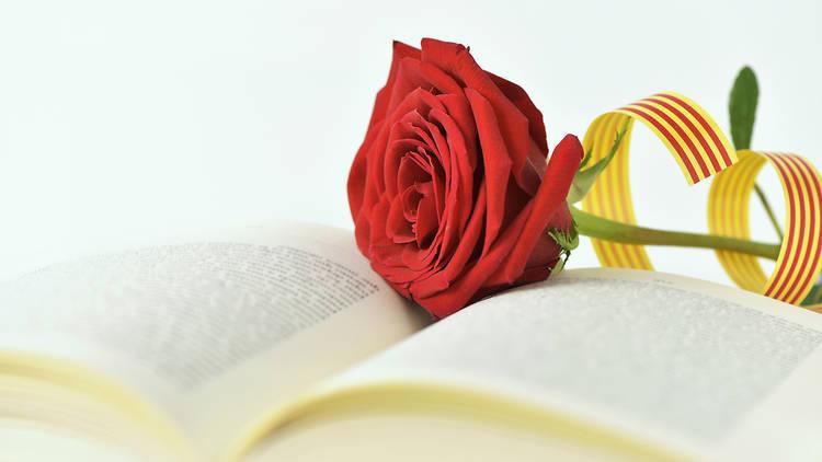 Rosa i llibre per celebrar Sant Jordi
