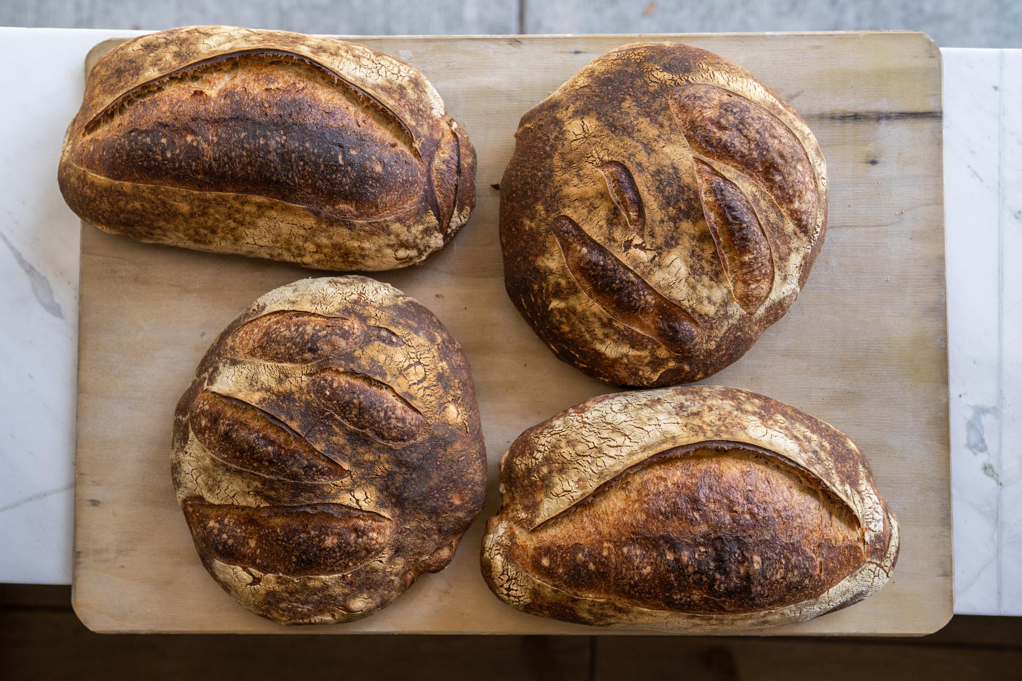 saint pan de masa madre