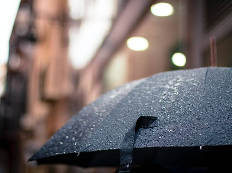 Umbrellas are not just for rain