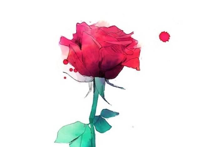 Les millors roses il·lustrades