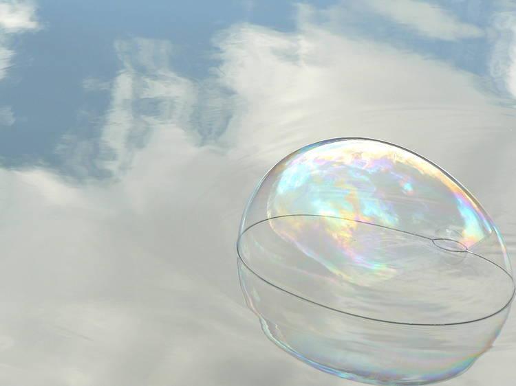 Garden Bubble Cam