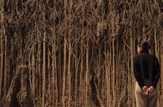 Eva Jospin, Forêt Palatine, 2019-2020,  at Among the Trees, Hayward Gallery, 2020. © Eva Jospin 2020. Courtesy of Hayward Gallery.