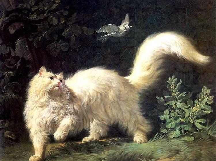 La place des chats dans l'histoire de l'art