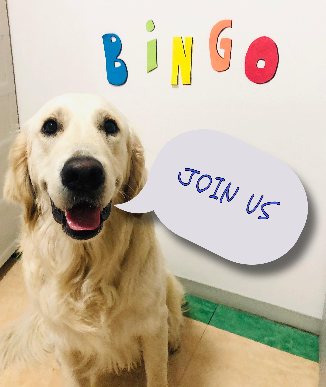 Shine On! Kids Virtual Bingo