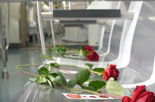 Roses al metro i autobusos de Barcelona
