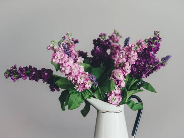 flowers, florist, bouquet, flower, unsplash, annie spratt