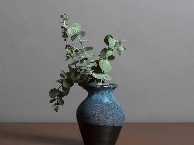 Bloom, flores, vasos, plantas, florista