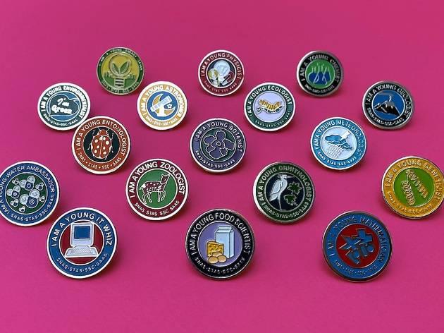Young Scientist Online Badge Scheme