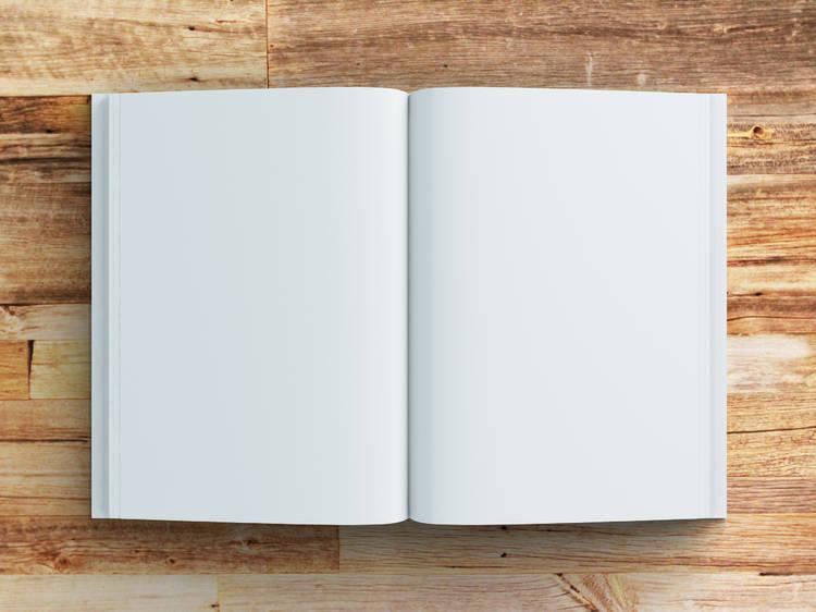 Huid de la página en blanco