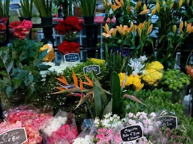 Florista Pimenta